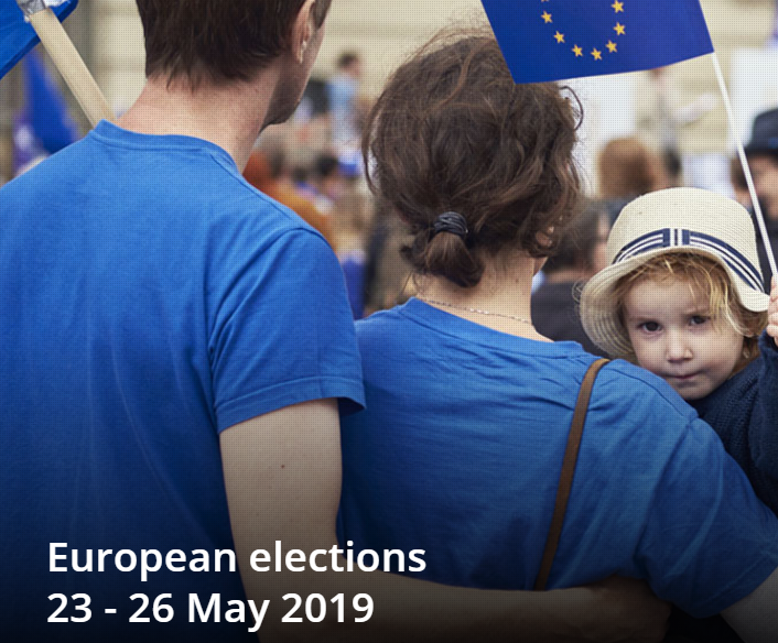 The European Elections